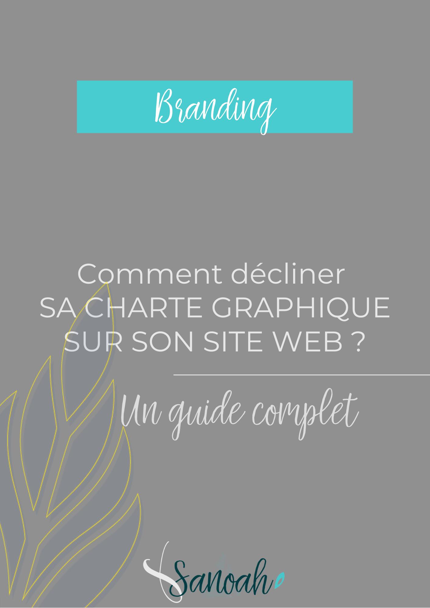 Comment décliner sa charte graphique sur son site web_un guide complet